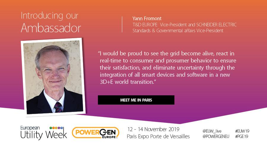 Yann Fromont, Vice-President T&D EUROPE, Standards & Governmental affairs Vice-President SCHNEIDER ELECTRIC