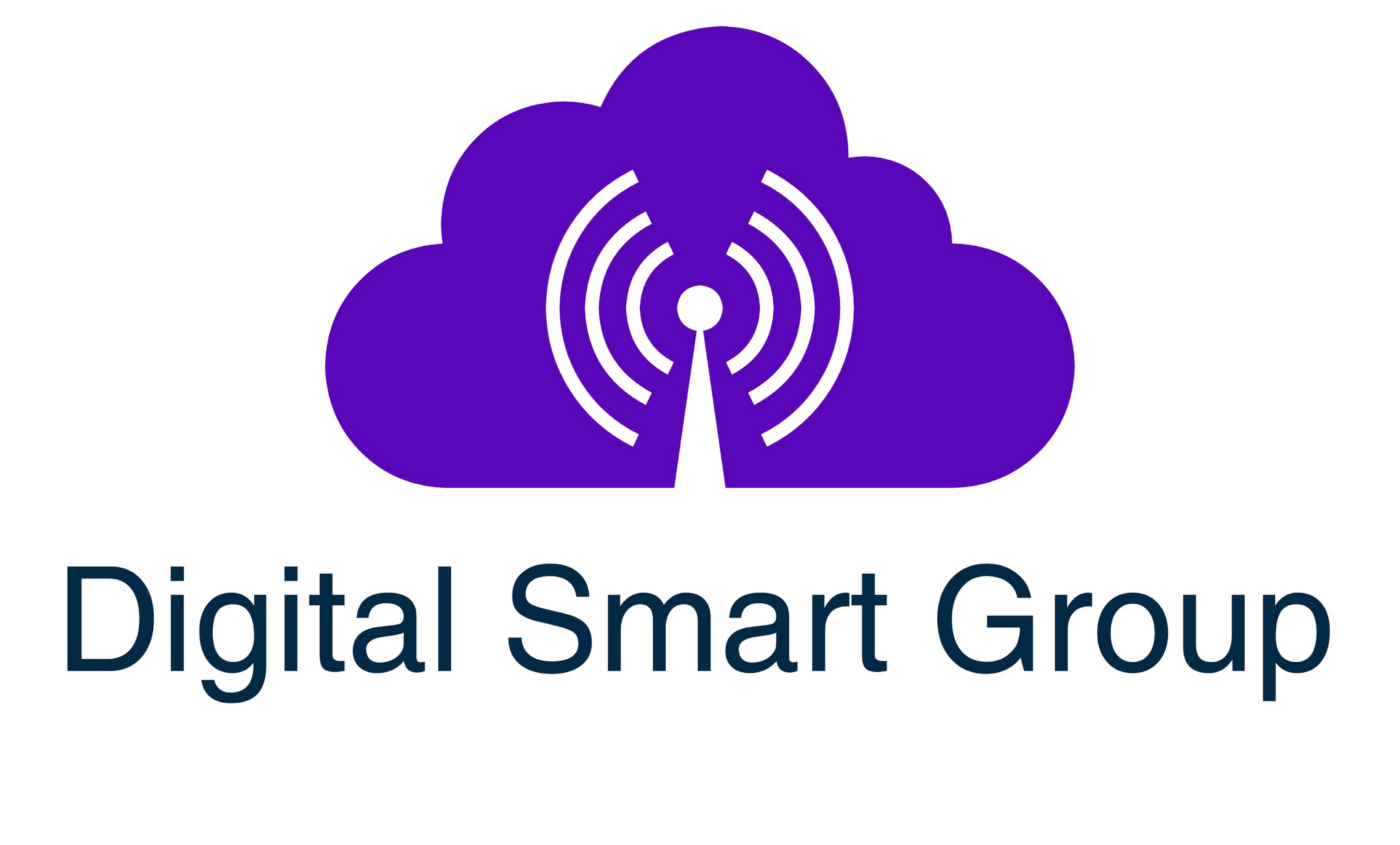 DIGITAL SMART GROUP