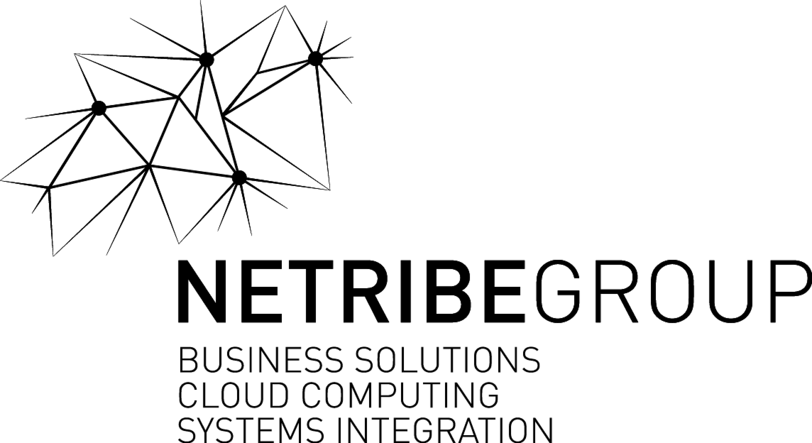 Netribe Business Solutions